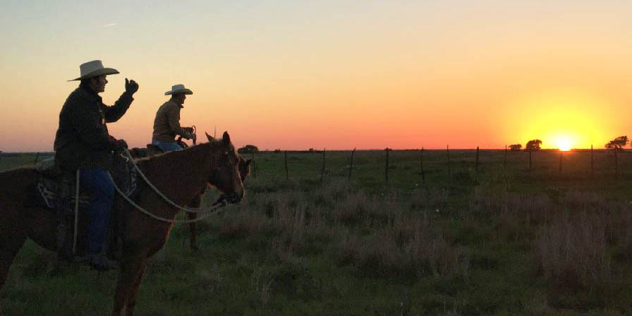 Cowboys riding into the sunset